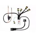 HEX ezCAN - správce elektro příslušenství pro R1200GS/A 2004-2012