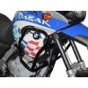 Velmi pevný padací rám značky Heed pro BMW F650GS 2000-2007 a F50GS Dakar 2000-2007, který dobře ochrání horní část motocyklu. Barva: černá